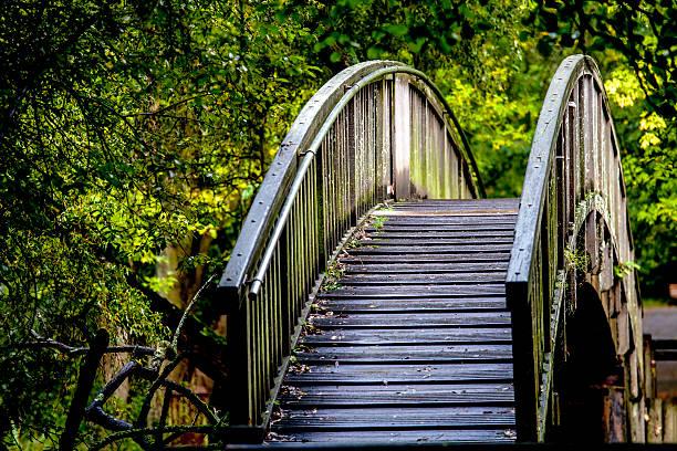 puente - carlosanchezpereyra fotografías e imágenes de stock