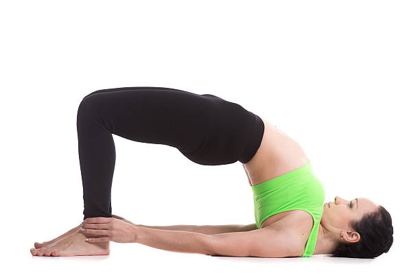 Bridge Pose (Setu Bandhasana) Beautiful sporty girl doing yoga workout, standing in bridge pose, dvi pada pithasana, setu bandhasana, set exercises for strengthening back and shoulders muscles shoulder stand stock pictures, royalty-free photos & images