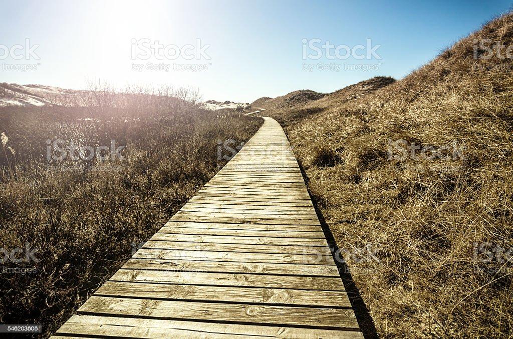 Brücke über den sand dunes – Foto