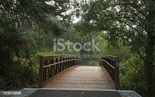 A pedestrian bridge spans a river in rural British Coiumbia. Summer morning in the fog.