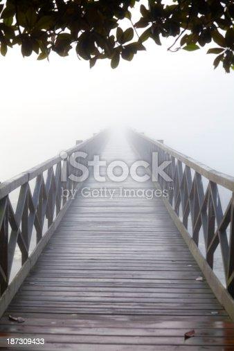 Long wooden bridge into the mist under leaves
