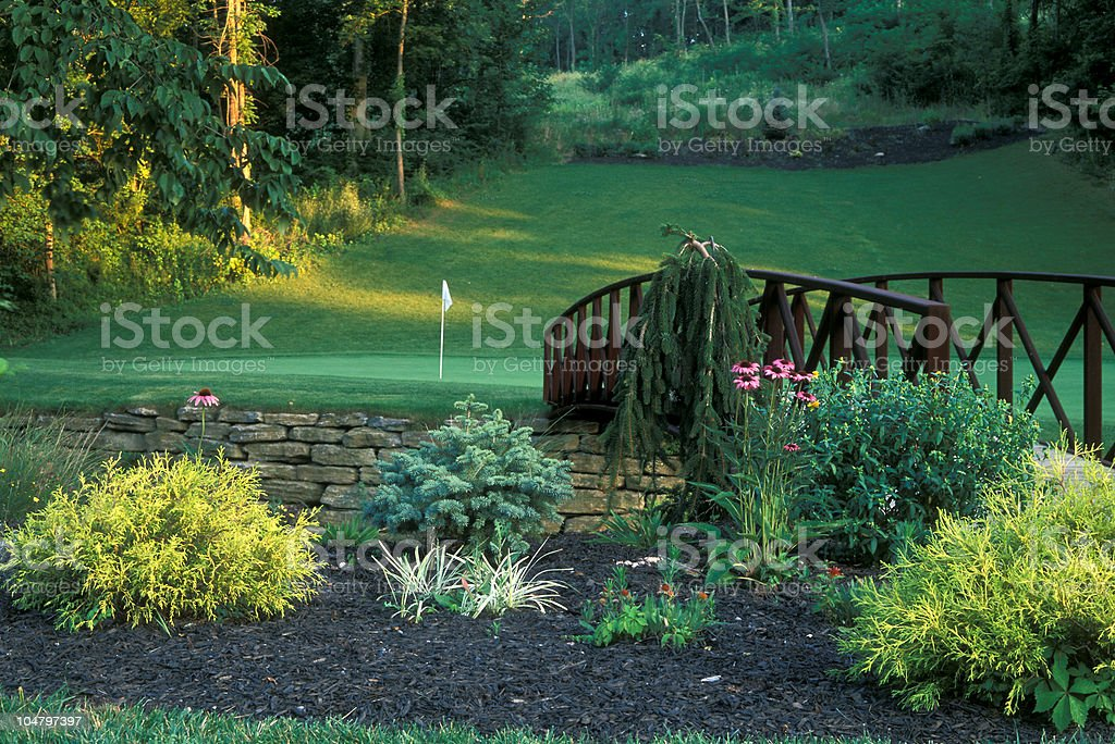 Bridge to the Green royalty-free stock photo