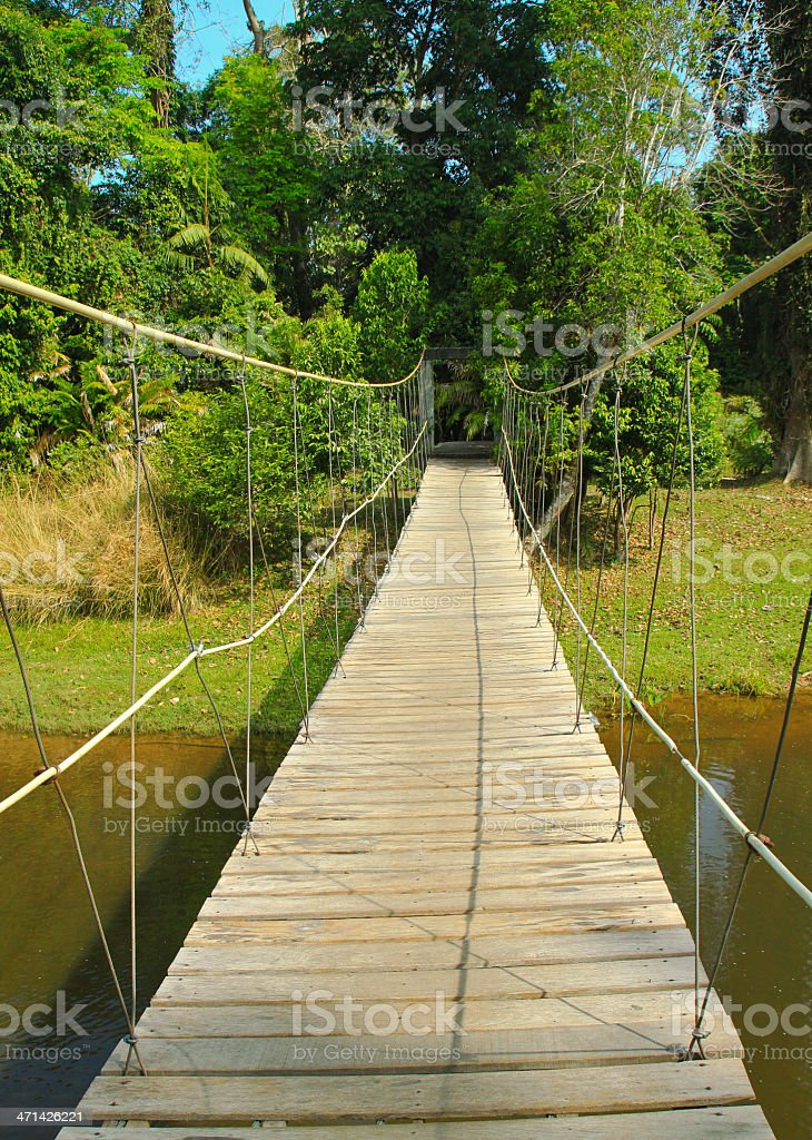 Bridge to the jungle in Thailand royalty-free stock photo