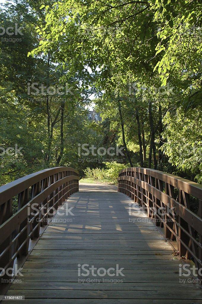 Bridge under Canopy of Leaves stock photo