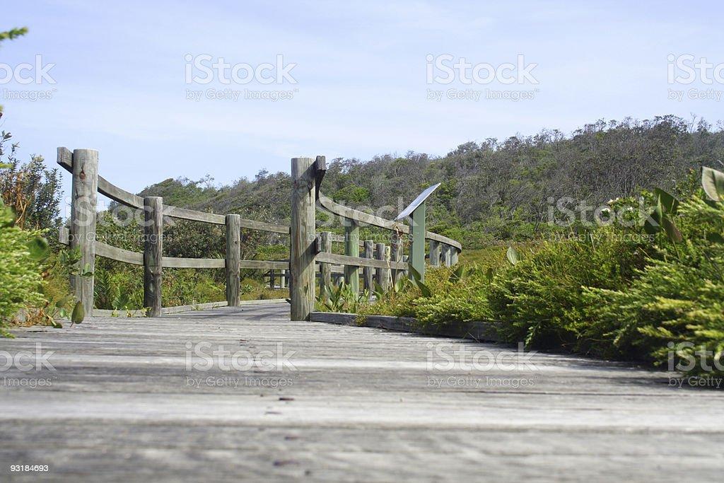 bridge wilderness landscape stock photo