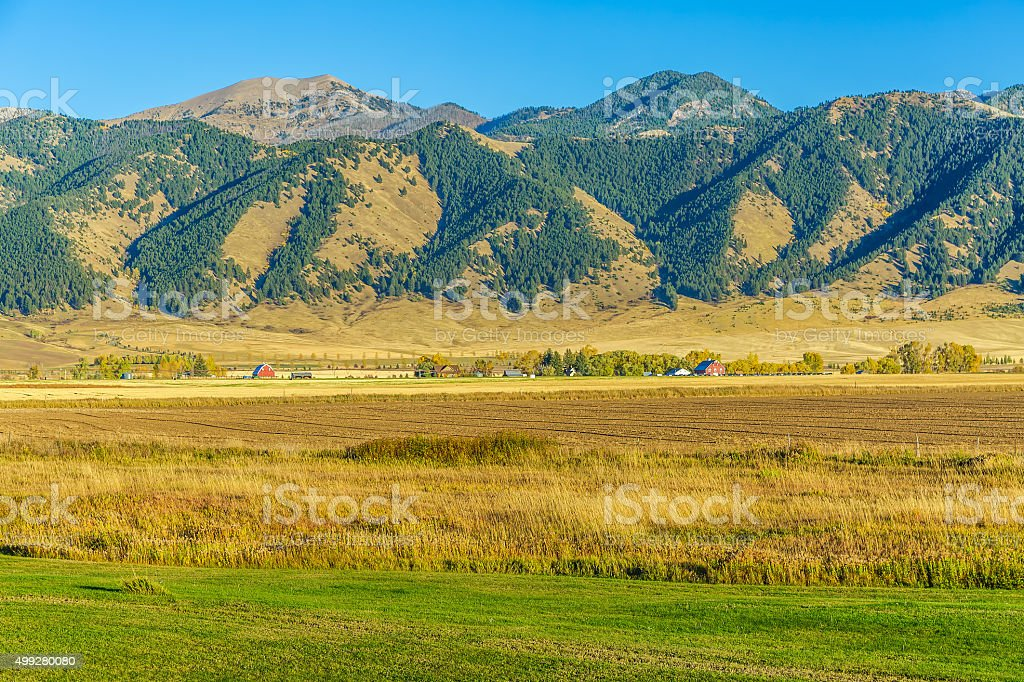 Bridger Mountain Fields stock photo