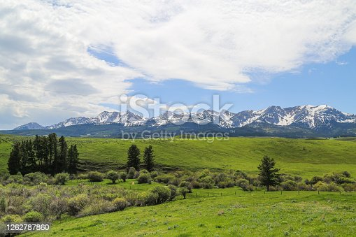 istock Bridger Mountains in Spring 1262787860