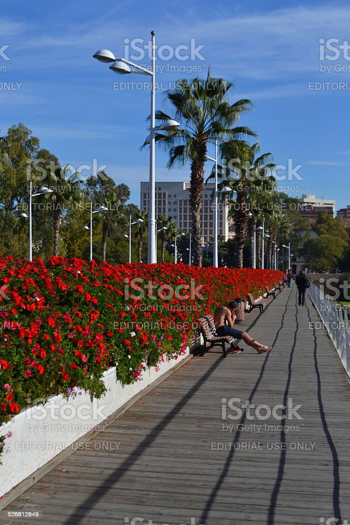 Puentes de las Flores - Valencia, Spain stock photo