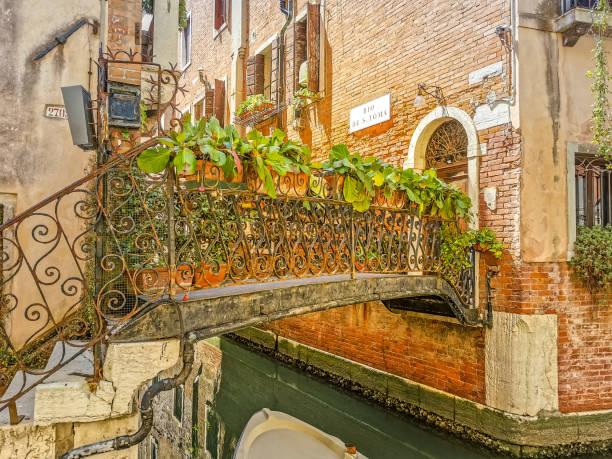 Bridges of Venice – zdjęcie