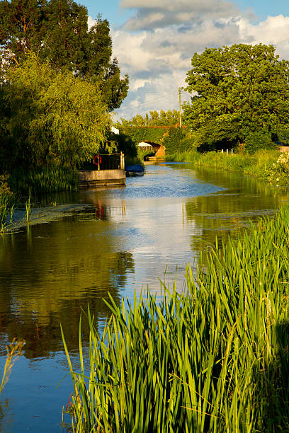 Bridgwater and Taunton Canal Somerset England The Bridgwater and Taunton Canal in Somerset England, near to the village of Creech St Michael.  A god example of an English canal somerset england stock pictures, royalty-free photos & images