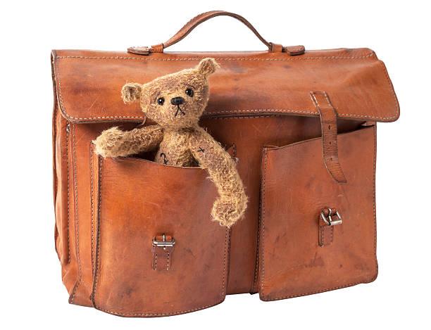 Briefcase and Teddy Bear stock photo