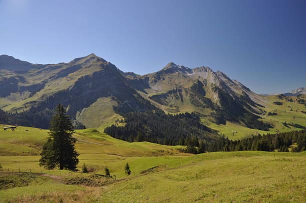 Brienzer Rothorn, den Bergen in der Schweiz – Foto