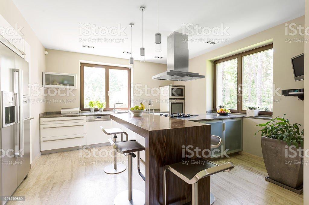Bright and spacious kitchen area photo libre de droits