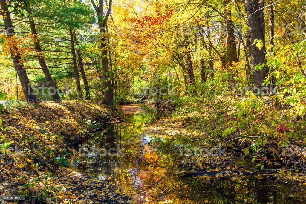 Bright autumn colours along scenic natural creek idyll stock photo