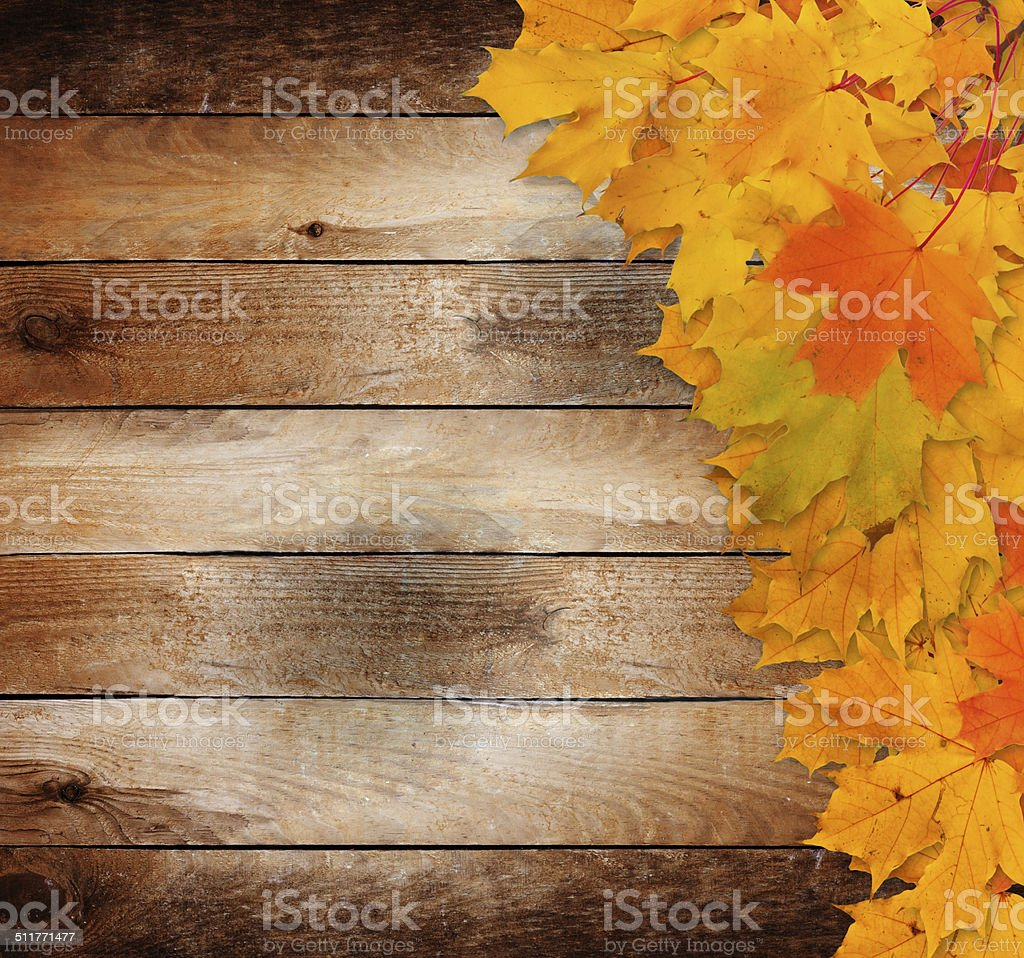 Bright autumn leaves on the old grunge wooden background stock photo