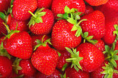 Bright background with fresh juicy strawberries closeup.