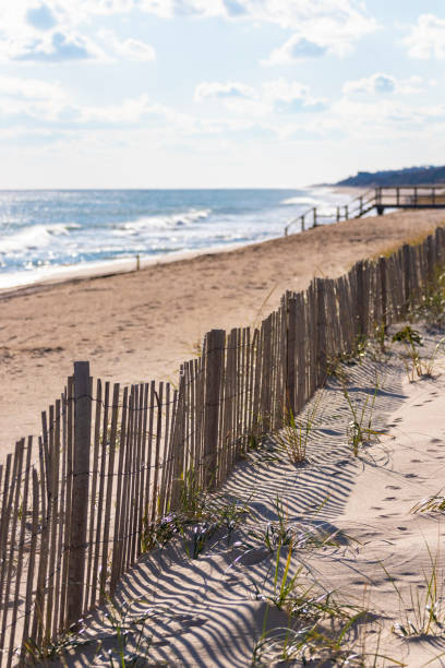 Bright beach and sand dune protection fence stock photo