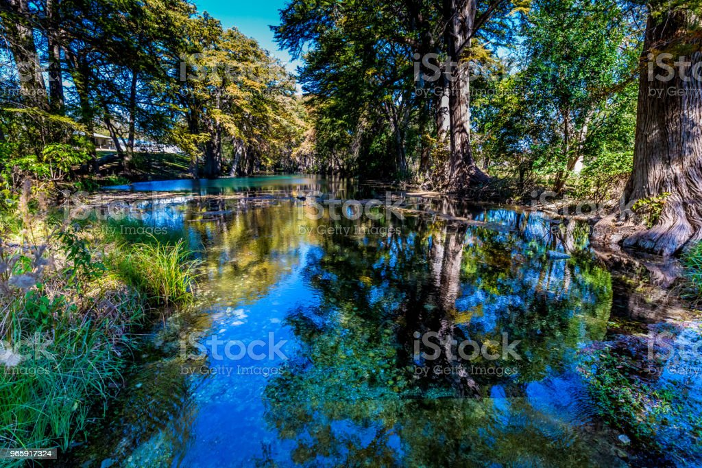 Bright Beautiful Fall Foliage on the Crystal Clear Frio River. - Royalty-free Autumn Stock Photo