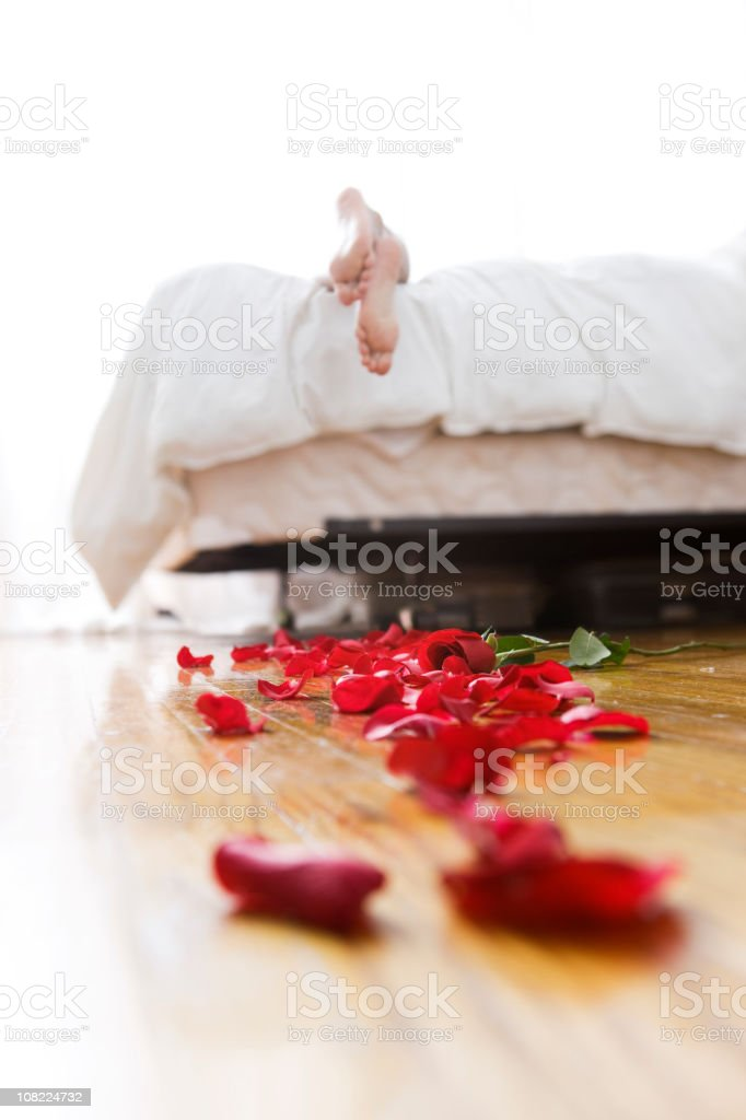 Bright Bedroom with Trail of Rose Petals, Copy Space stock photo