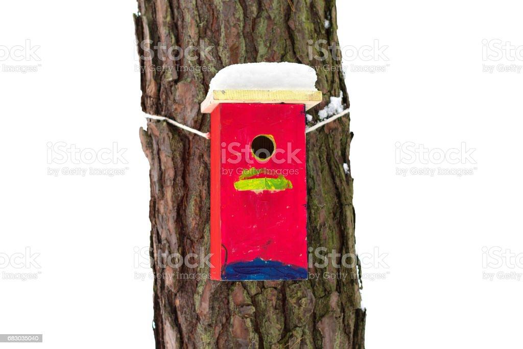 Bright birdhouse. foto de stock royalty-free