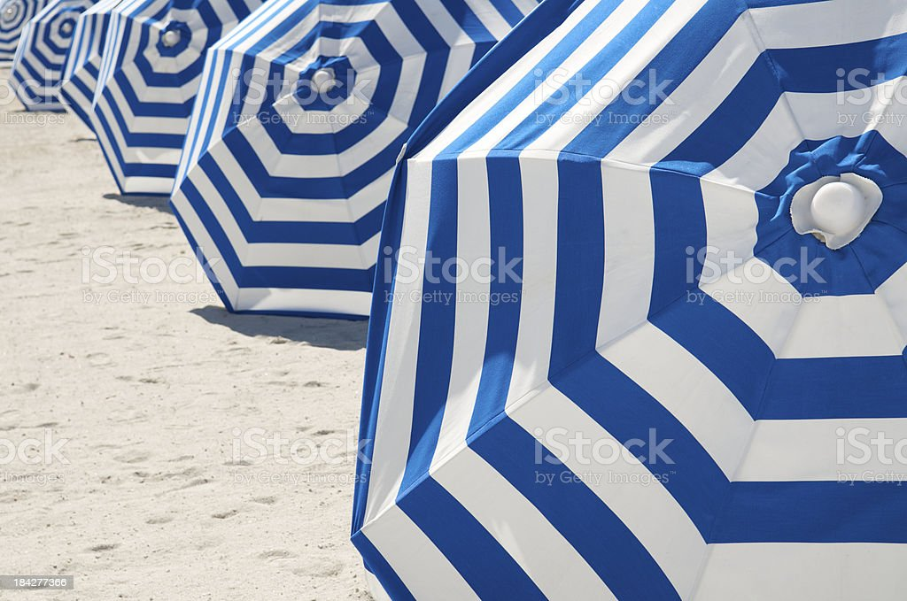 Bright Blue and White Striped Beach Umbrellas in a Row stock photo
