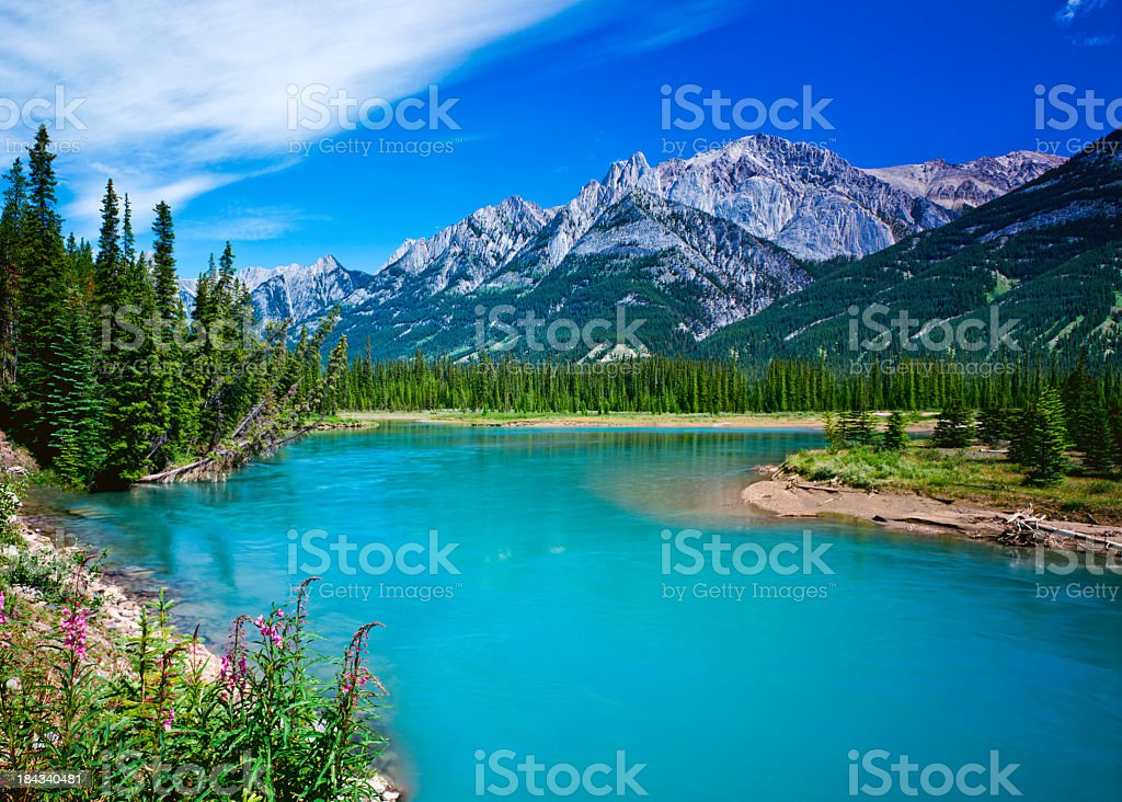 Bright blue Bow River in Canadian Rockies in Banff stock photo