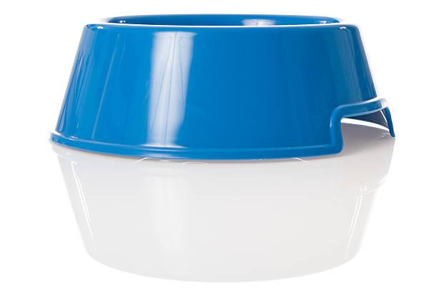 bright blue dog bowl mit reflexion - hundenapf stock-fotos und bilder