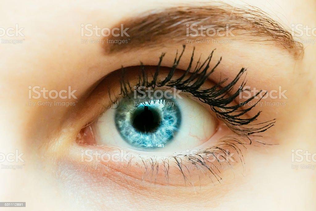 Bright Blue Eye Close Up stock photo