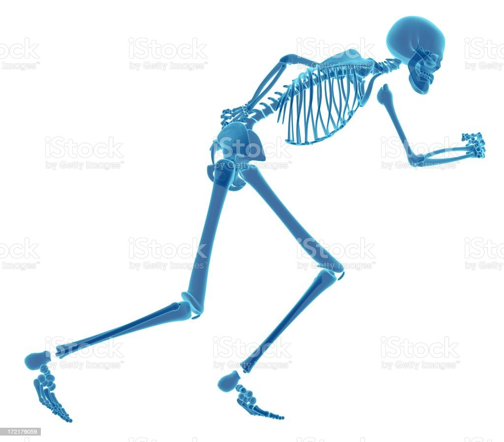 Bright blue human skeleton x-ray running isolated on white royalty-free stock photo