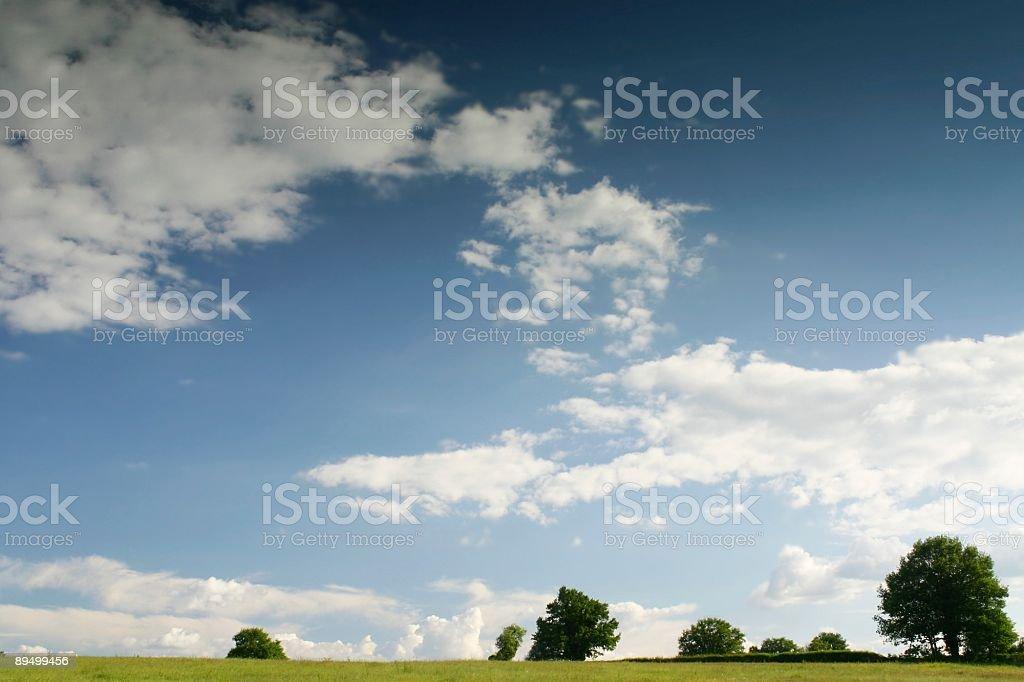 Paesaggio Blu brillante foto stock royalty-free