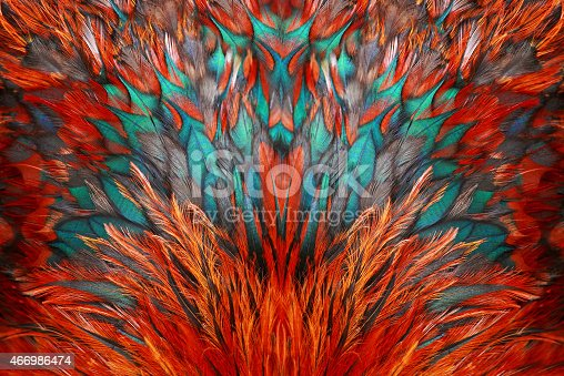istock Bright brown feather group of some bird 466986474