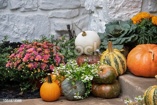 Bright colorful autumn pumpkins and flowers arranged on steps against white painted stone wal