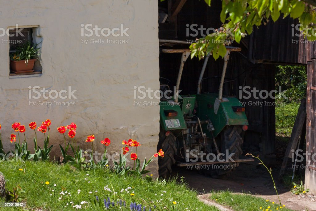 bright colorful flowers in german countryside photo libre de droits
