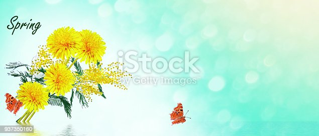 997750962 istock photo Bright colorful spring flowers 937350160