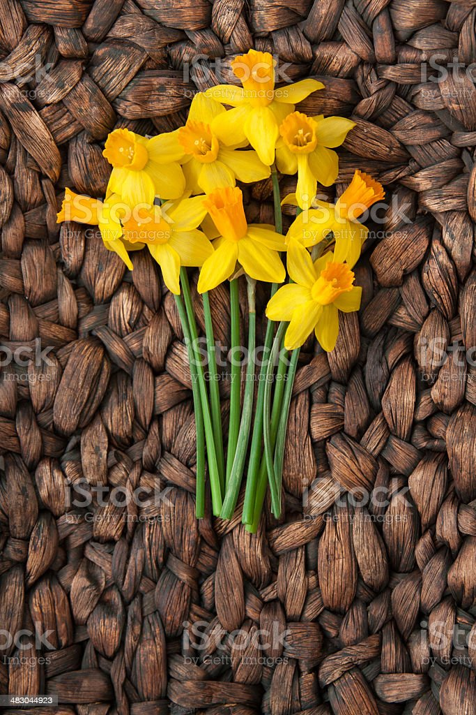 Bright Daffodils Centered on Woven Background stock photo