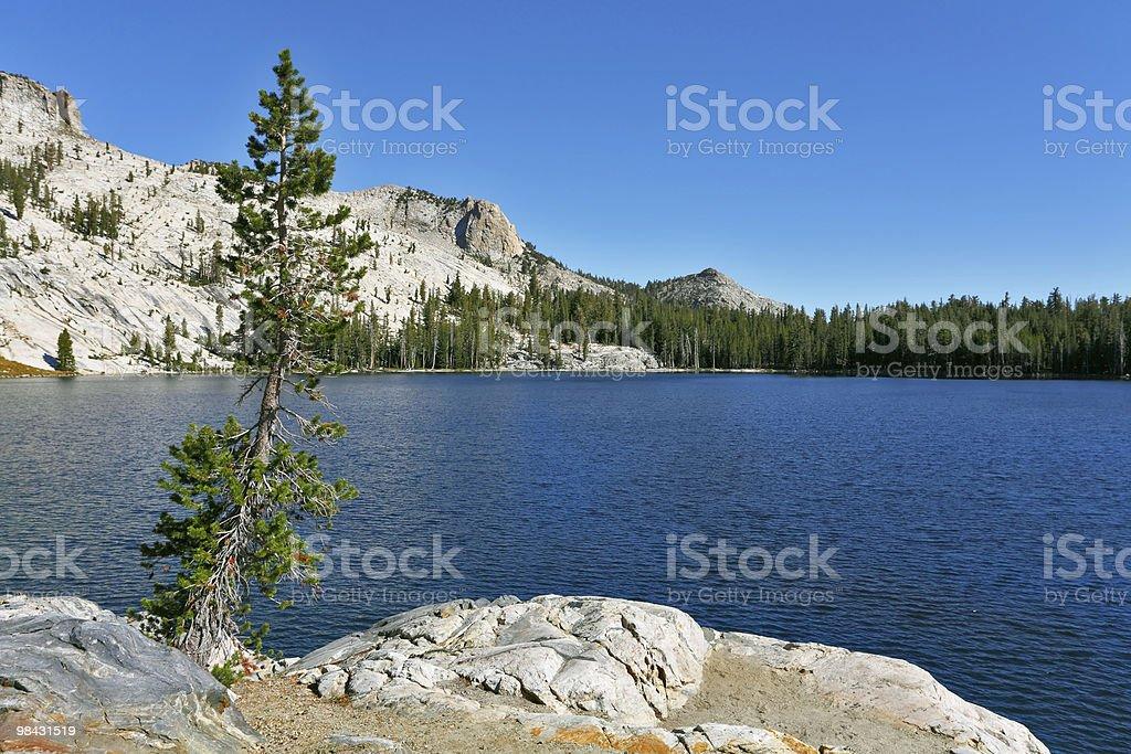 Bright dark blue May lake royalty-free stock photo
