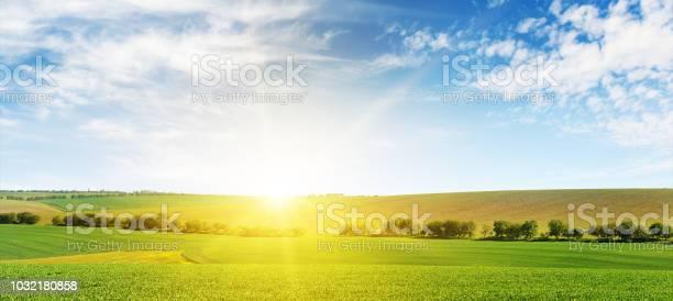 Photo of Bright dawn over corn field.