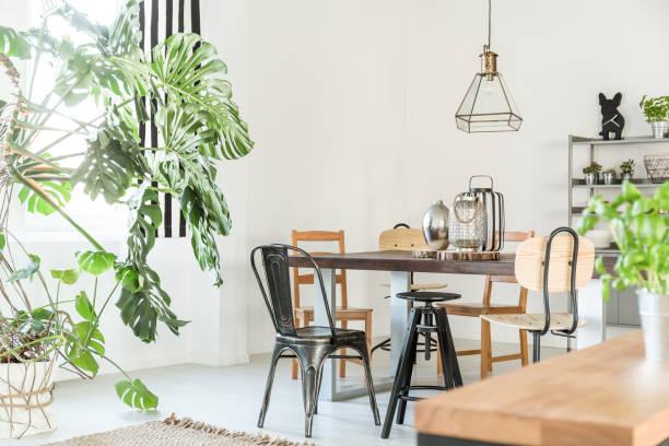 helles esszimmer mit tisch - küche deko grün stock-fotos und bilder