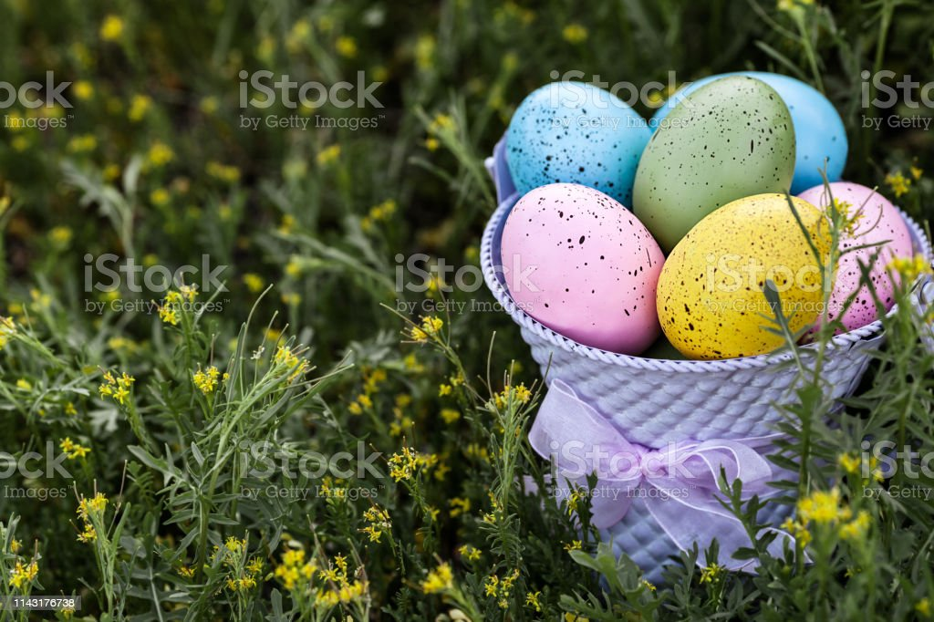 Bright Easter eggs in a purple bucket with copy space on the left stock photo