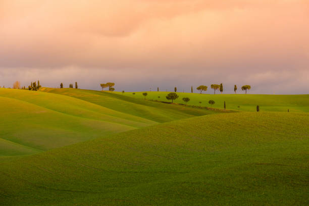 Bright evening Tuscany landscape stock photo