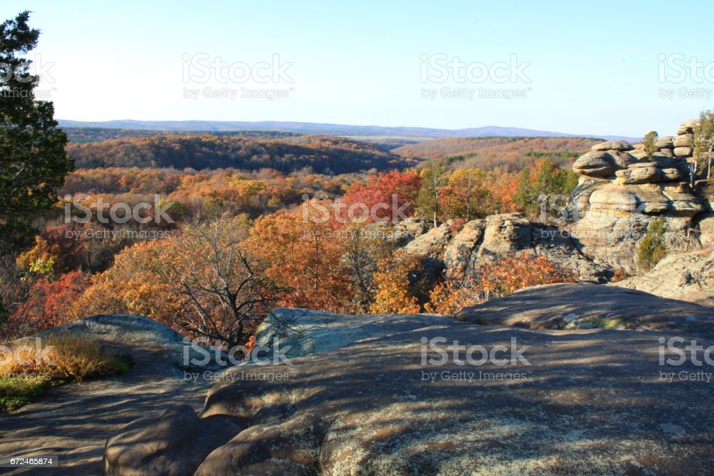 Bright Fall Colors at National Forest stock photo