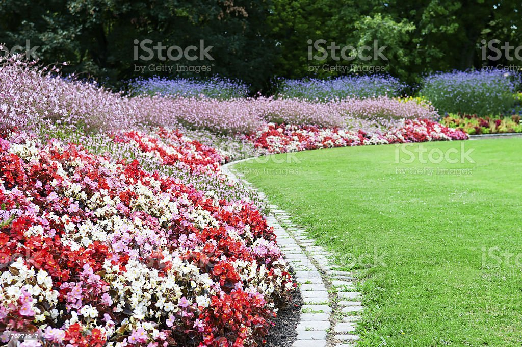 bright flower bed and green grass royalty-free stock photo