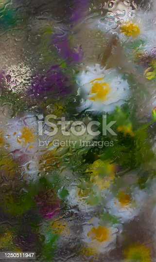 Bright flowers behind a wet glass or window in the rain
