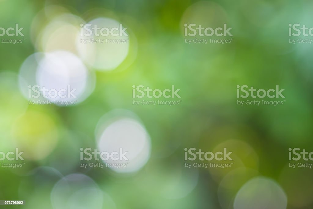 Bright green and white blur bokeh abstract light spring forest background. royalty-free stock photo