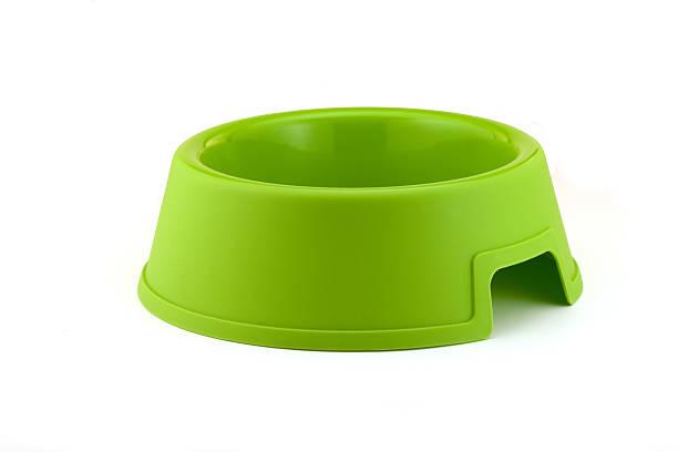 bright green hundenapf. - hundenapf stock-fotos und bilder