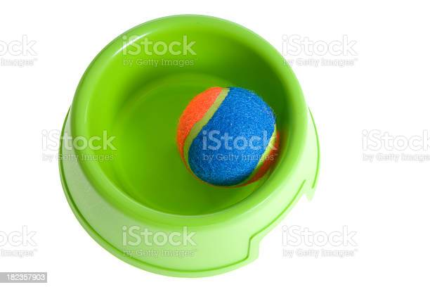 Bright green dog dish with colorful ball picture id182357903?b=1&k=6&m=182357903&s=612x612&h=kwvt9wrrld0jx9ygufxluc7tveciihp68mr4bvfktg8=