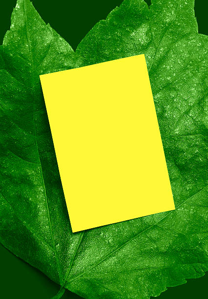Hell grüne Anzeige Endframe – Foto