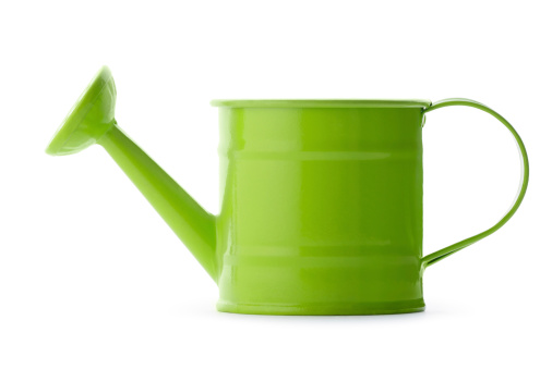 Bright green watering can white background