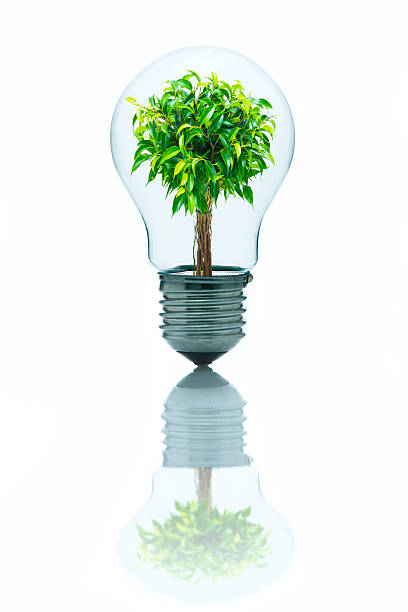 Bright ideas to protect environment stock photo