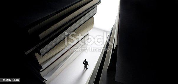 istock bright intelectual path of success and wisdom 495976440
